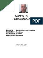 CARPETA DOCENTE 2011-IUNCP