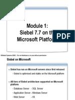 SiebelArchitectureontheMSPlatform[1]