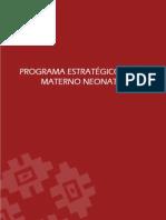 Prog Estrategicos Salud Materno Neonatal