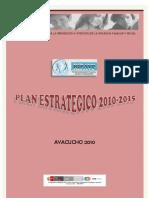 Plan Estrategico Ripavfs 2010-2015