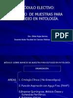 Manejo de Muestra de Patologia 2011