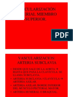 0vascularizacion Arterial Miembro Superior