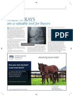Scone Equine Hospital December 2011 BLUEBLOODS article