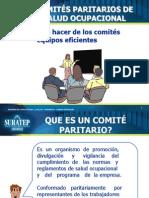 Comites Paritarios de Salud Modificada