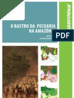 O rastro da pecuária na Amazônia
