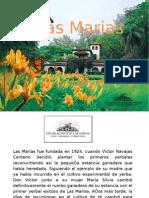 Las Marias[1][1]
