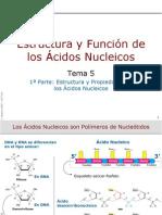 Estructura y Funcion de Los Acidos Nucleicos