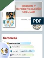 1.Origen y diferenciación celular