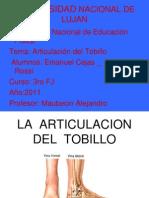 La Articulacion Del Tobillo1