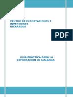 Guia Practica Para La Exportacxion de Malanga[1]