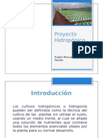 Proyecto Hidroponico Ruben Duran