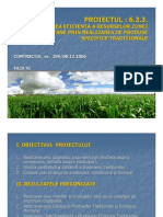 proiect_produse_traditionale