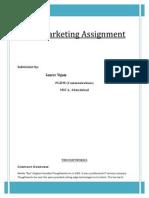 Analysis of Thought Works Inc & Communispace Case Studies