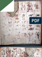 Codex Borgia Resistance 2010