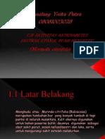 Ekstraksi Buah Mengkudu Sebagai Anti Diabetes (Gemilang Yooka Putra 08-28)