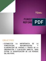 Copia de Nuevo Presentación de Microsoft Office PowerPoint