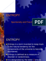 Entropy 2011