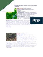 Uso de Plantas is
