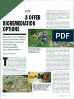 Mushrooms Offer Bio Remediation Options