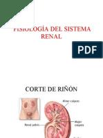 Fisio Sist Renal 11