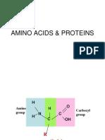 Amino Acids & Proteins