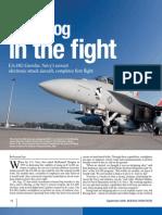 EA-18G US Growler Electronic Attack Aircraft