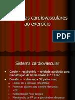 Respostas cardiovasculares ao exercício