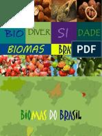 bioma biodiversidade