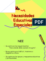 Enfoque e Identificación de Necesidades Educativas especiales