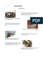 Funky Nests Fun Facts