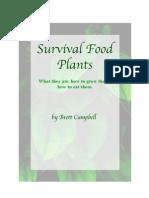 Survival Food Plants