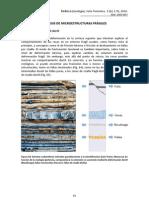 ANÁLISIS DE MICROESTRUCTURAS FRÁGILES