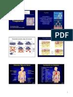 Clase 13 Inmuno de Trasplantes y Tumores