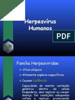 aula_7_herpevirus_humanos_2011