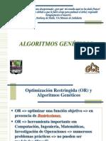Optimización Restringida con AG