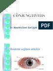 keratitis iwan