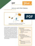 Client Gateway Windows En