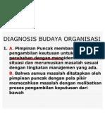 Diagnosis Budaya Organisasi Latihan