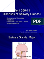 Slide 14 Diseases of Salivary Glands I