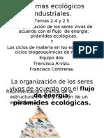 Piramides ecológicas y ciclos biogeoquímicos
