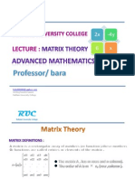 Lecture Matrices Theory