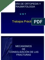 reparacion_de_fracturas