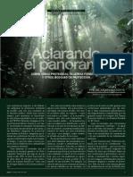 Aclarando El Panorama (Ricardo Saucedo)