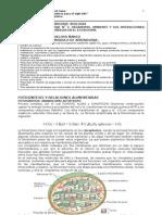 1° MEDIO BIOLOGIA  IVETTE  MODULO N° 3