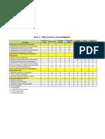 Anexo 3. Matriz de Roles y Responsabilidades