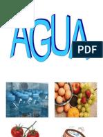 Agua en Alimentos IAGI-10[1]