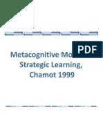 Learning Strategieschamot