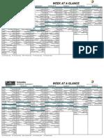 LifeTime Schedule