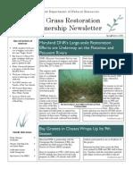 Spring - Summer 2006 Maryland Bay Grasses Newsletter