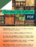 medicinais-100405102656-phpapp01